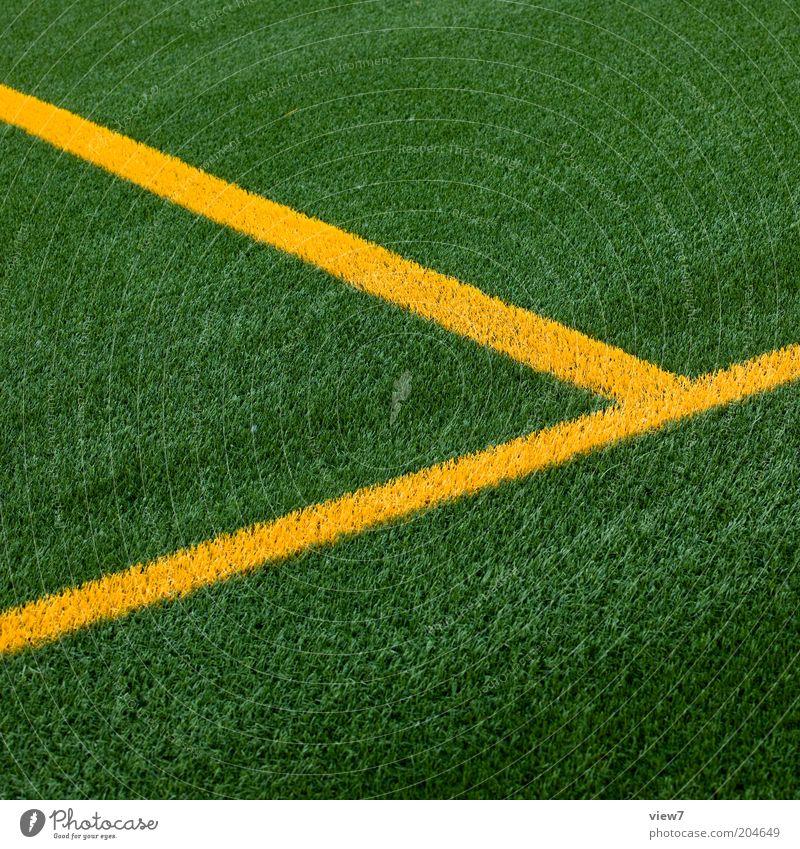 ... wir wissen wo dein Auto steht! grün gelb Sport Wiese Linie Perspektive modern Ordnung ästhetisch neu Rasen authentisch einfach Sauberkeit Sportrasen rein