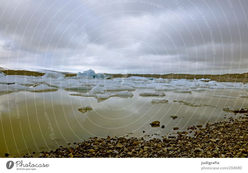 Island Umwelt Natur Landschaft Wasser Himmel Wolken Klima Klimawandel Gletscher Seeufer außergewöhnlich kalt nass natürlich Stimmung ruhig Farbfoto