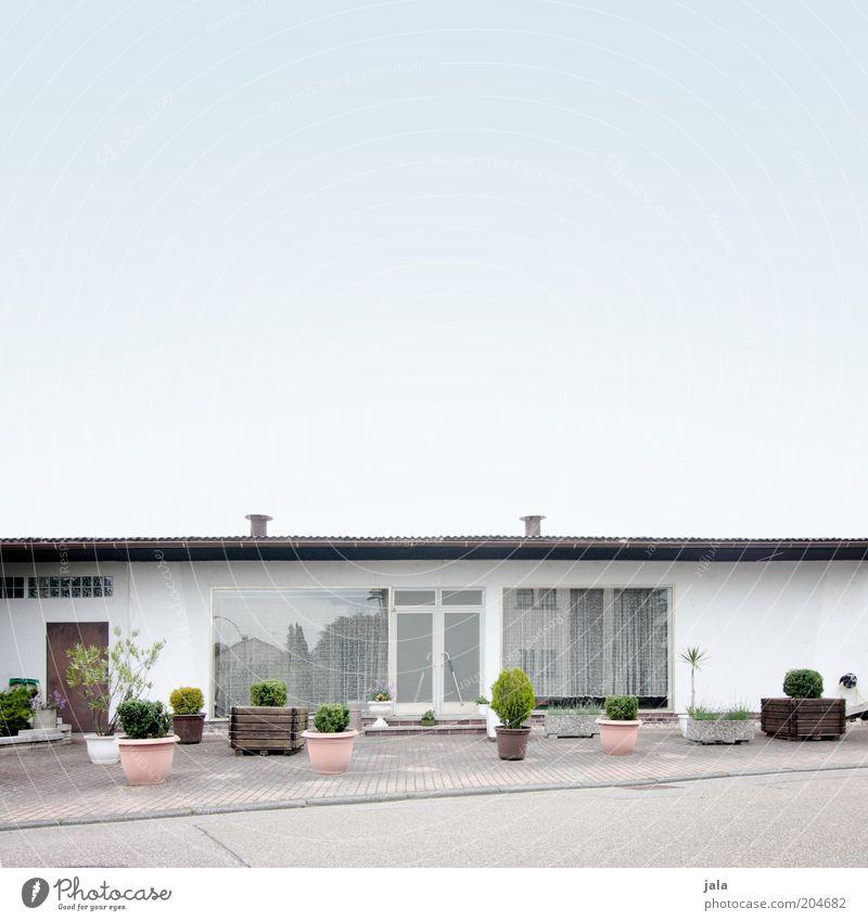 aus der traum... Grünpflanze Topfpflanze Haus Platz Bauwerk Gebäude Architektur Ladengeschäft Fenster Tür Straße Wege & Pfade blau grau weiß Farbfoto