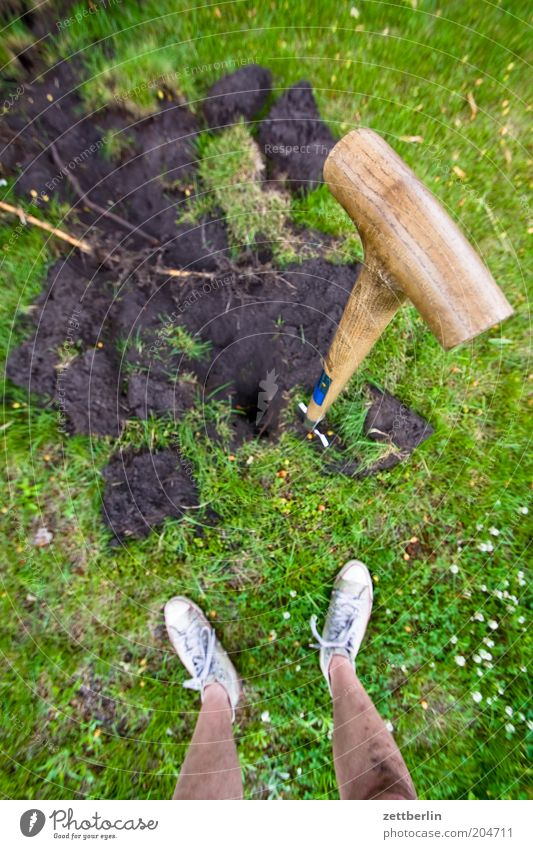 Umgraben Mensch Mann Pflanze Sommer Arbeit & Erwerbstätigkeit Gras Fuß Beine Erde Rasen Pause stehen Gartenarbeit Schaufel Gärtner Graben