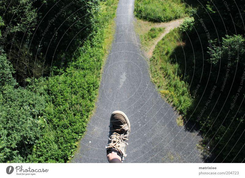 Siebenmeilenschuh Umwelt Natur Wald Schuhe Wege & Pfade tief verrückt hoch Abzweigung Schatten Mut gewagt Farbfoto Außenaufnahme Experiment Tag Licht