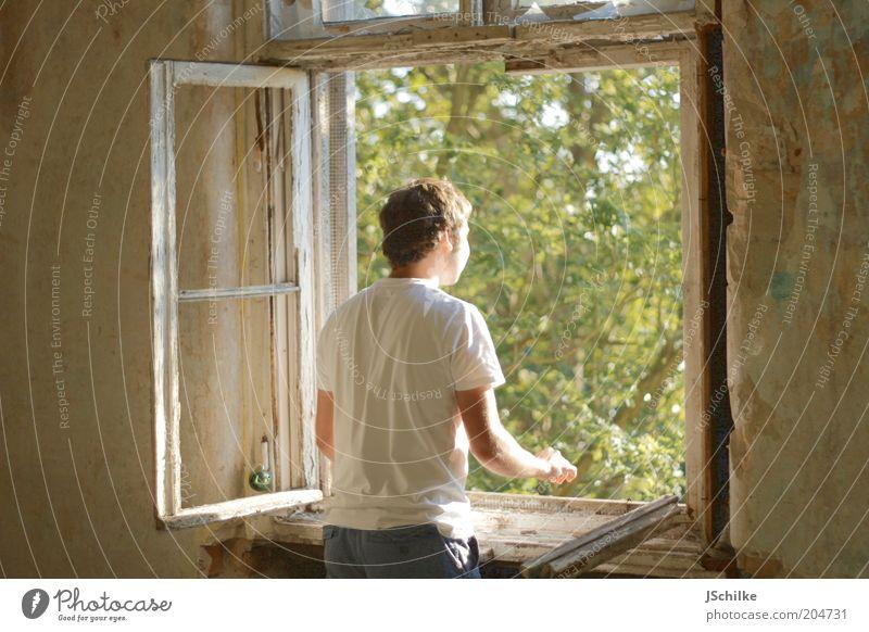 Fenster der Hoffnung Natur Jugendliche Baum ruhig Haus Fenster Glück Gebäude Erwachsene Wohnung maskulin Hoffnung T-Shirt offen kaputt Innenarchitektur
