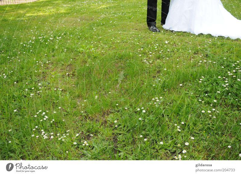 lebens-abschnitt Mensch maskulin Frau Erwachsene Mann Paar Partner Leben Beine Fuß 2 Kultur Veranstaltung Umwelt Natur Pflanze Gras Garten Wiese Anzug Schuhe
