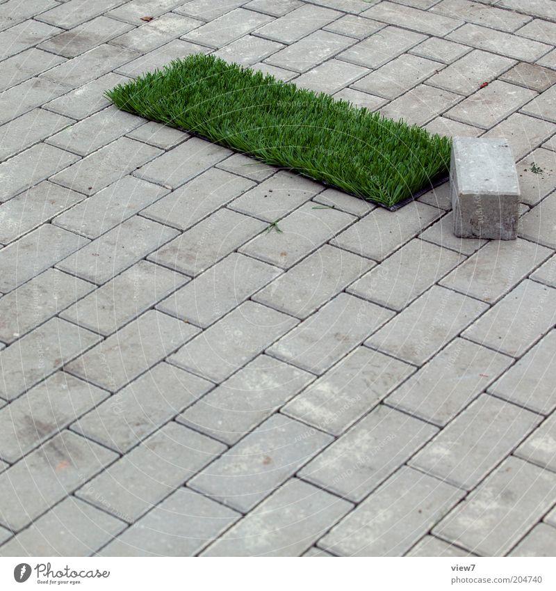 Trifft ein Stein ein Stück Rasen ... Wiese Wege & Pfade authentisch außergewöhnlich dunkel dünn einfach modern neu rebellisch grün bizarr einzigartig Ordnung