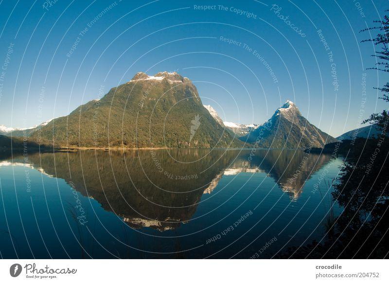 New Zealand 82 Umwelt Natur Landschaft Urelemente Wolkenloser Himmel Schönes Wetter Alpen Berge u. Gebirge Gipfel Schneebedeckte Gipfel Küste Meer Milford Sound