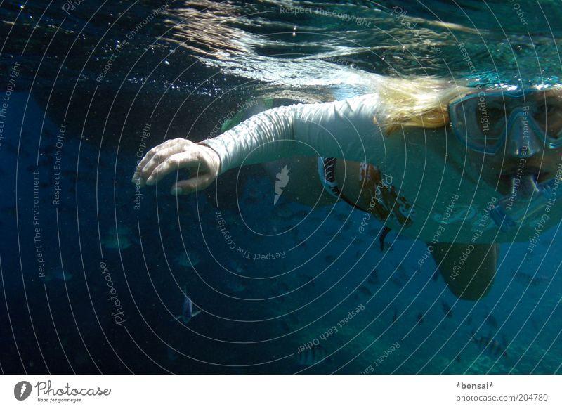 silence Freude Ausflug Meer Wassersport tauchen 1 Mensch Schönes Wetter Schutzbekleidung Bikini blond Fisch Schwarm beobachten blau Wachsamkeit Bewegung