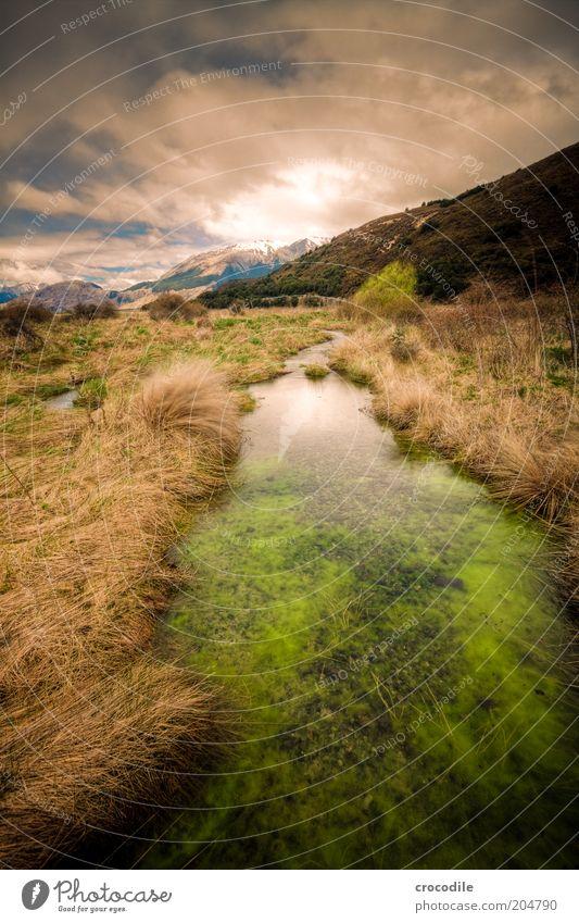 New Zealand 96 Himmel Natur Ferien & Urlaub & Reisen Ferne Erholung Berge u. Gebirge Landschaft Umwelt Insel Urelemente außergewöhnlich Alpen Reisefotografie Gipfel Bach Grasland
