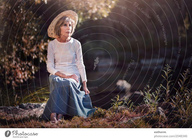Ältere Frau, die auf dem Gebiet sitzt Mensch Natur Ferien & Urlaub & Reisen alt schön Erholung Einsamkeit ruhig Wald Erwachsene Leben Lifestyle Liebe Senior