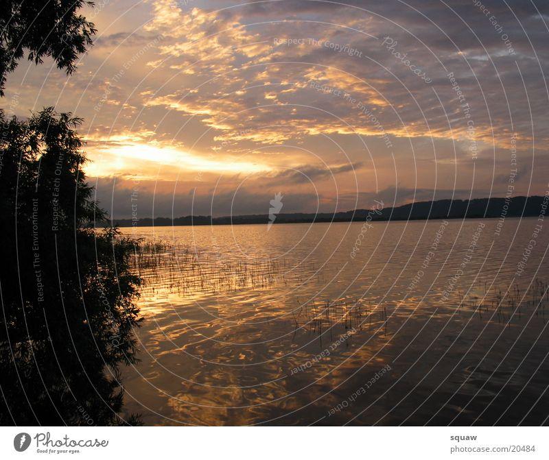 Sunrise Wolken Sonnenuntergang Wasser Elbe Natur Landschaft