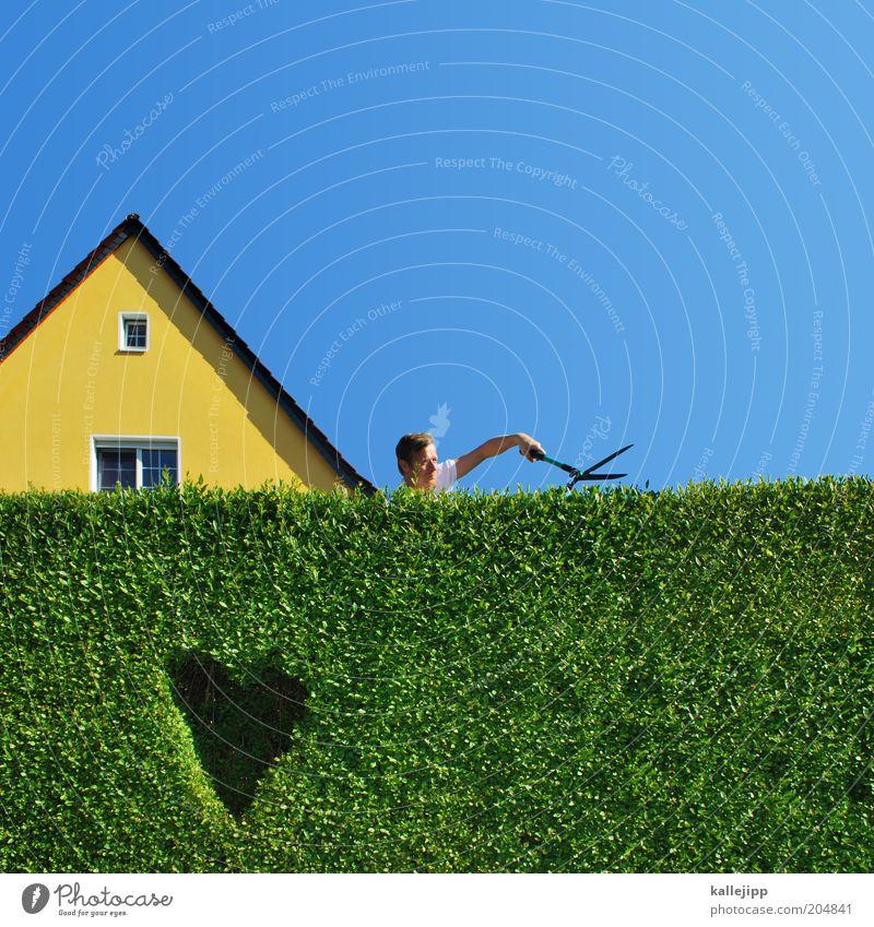 edward mit den scherenhänden Mensch Mann Natur Sommer Haus Erwachsene Umwelt Leben Garten Arbeit & Erwerbstätigkeit Herz Freizeit & Hobby maskulin Design Häusliches Leben Grenze