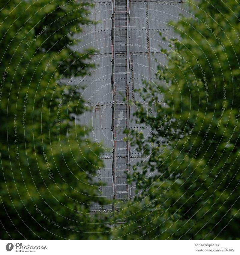Aussteiger da lang grün Baum grau Gebäude Perspektive Bauwerk Stahl entdecken Leiter Bildausschnitt Durchblick Pflanze Stahlblech Stahlturm