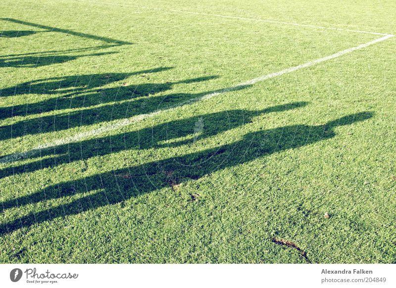 11 Freunde müßt ihr sein.... Mensch grün Leben Sport Gras Menschengruppe Freundschaft Schilder & Markierungen Fußball Sportmannschaft Team Sportrasen Spielfeld Zusammenhalt Reihe Teamwork