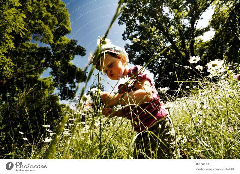 GARTEN Mensch Kind Natur Blume Sommer Gras Garten Glück Park Denken Zufriedenheit Frieden beobachten einzigartig Lebensfreude berühren