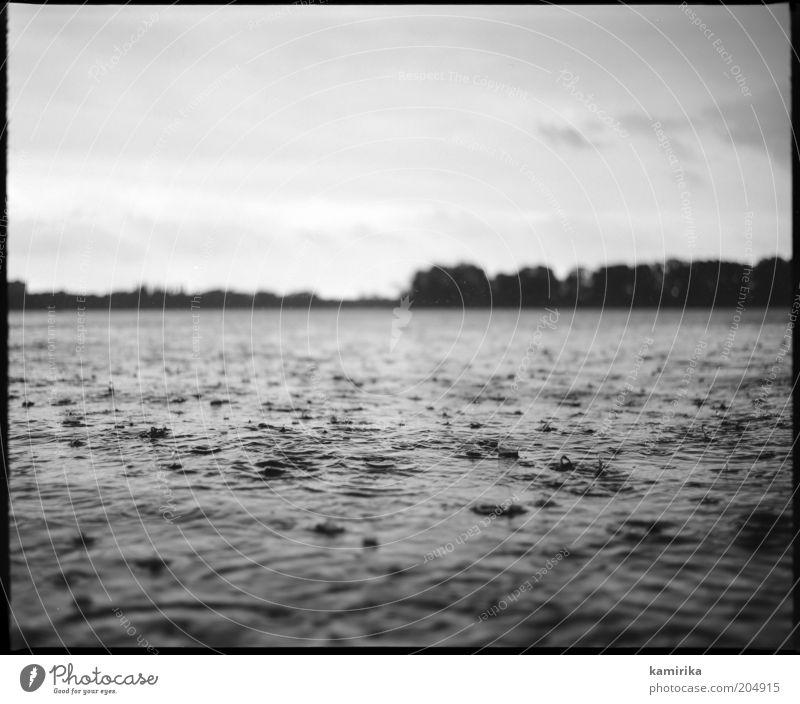 You've come a long way Natur Landschaft Wasser Wassertropfen Himmel Sommer Klima Klimawandel Wetter schlechtes Wetter Unwetter Regen Gewitter Wellen Seeufer