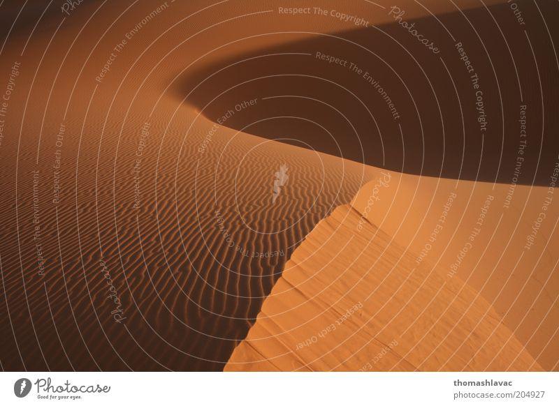 Natur Ferien & Urlaub & Reisen Sonne Umwelt Landschaft Wärme Sand Ausflug Tourismus Wüste Schönes Wetter Düne Umweltschutz Sahara Marokko Sonnenaufgang