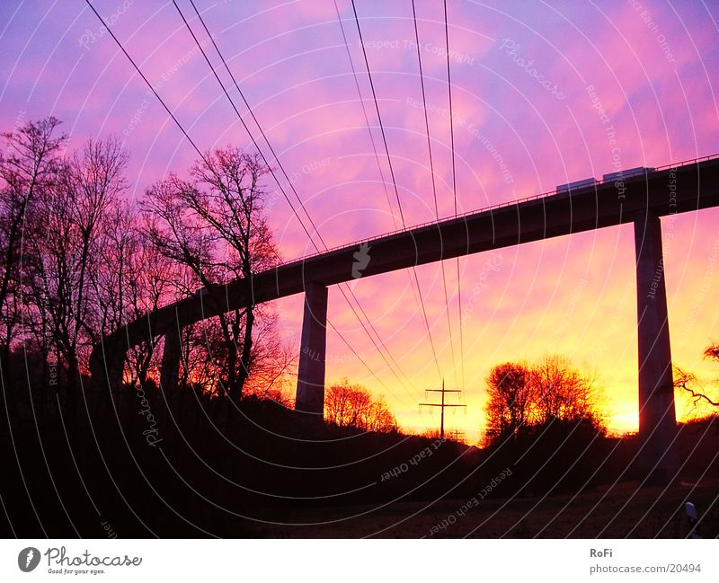 unter der Brücke Baum Farbe Brücke Pause Kabel