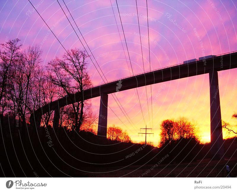 unter der Brücke Baum Farbe Pause Kabel