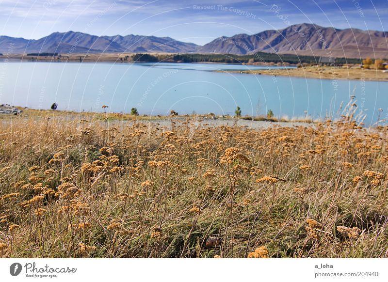 middle earth Natur Sonne Blume grün Ferien & Urlaub & Reisen gelb Ferne Erholung Gras Berge u. Gebirge See Wärme Landschaft Ausflug Kirche Aussicht