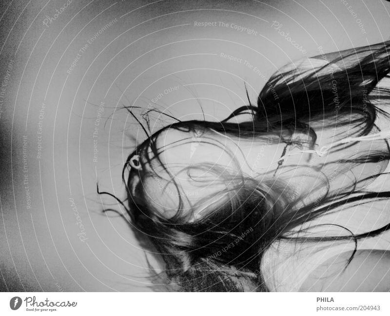 fühle die spannung Mensch Jugendliche Leben feminin Gefühle Haare & Frisuren Kopf Tanzen Kraft Energie Lifestyle Coolness Leidenschaft Schwarzweißfoto brünett