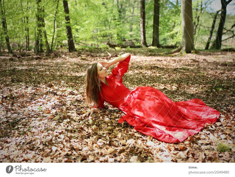 . feminin Frau Erwachsene 1 Mensch Schönes Wetter Baum Blatt Laubwald Wald Kleid brünett langhaarig beobachten festhalten liegen Blick schön Lebensfreude