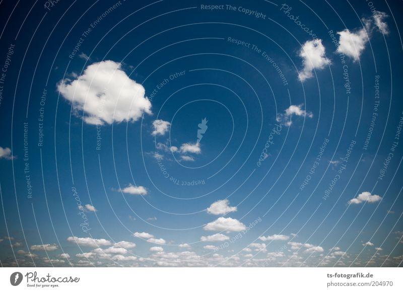 Wattebäuschchenhorizont schön Himmel weiß blau Wolken Ferne Freiheit Wärme Luft Wetter Umwelt rein natürlich Urelemente Schönes Wetter Leichtigkeit