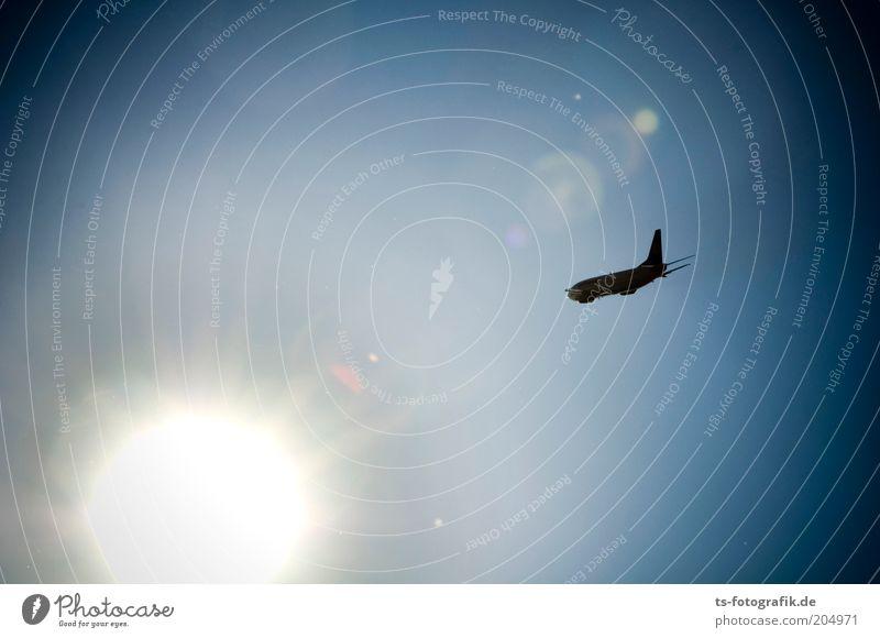 Ikarus-Airlines Himmel blau weiß Ferien & Urlaub & Reisen Sonne Sommer schwarz Ferne Freiheit Wärme fliegen Flugzeug Tourismus Luftverkehr Schönes Wetter