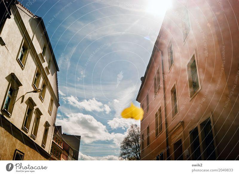 Scheibenwischerblatt Himmel Pflanze Stadt Sonne Blatt Wolken Haus Fenster Straße Wand Frühling Mauer Deutschland Fassade hell PKW