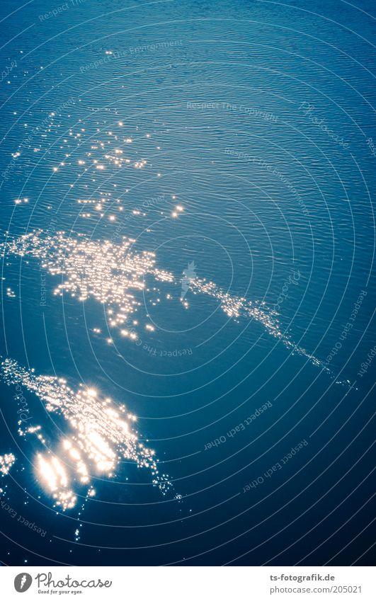 Walgesänge Freiheit Meer Umwelt Natur Urelemente Wasser Sommer Wasseroberfläche glänzend nass blau weiß Farbfoto Außenaufnahme Luftaufnahme Menschenleer