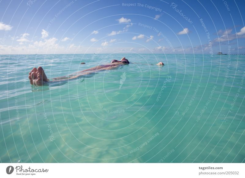 SICH TREIBEN LASSEN Frau Wasser Sommer Ferien & Urlaub & Reisen ruhig Ferne Erholung Horizont Wellness Pause liegen rein Klarheit Schwimmen & Baden Idylle