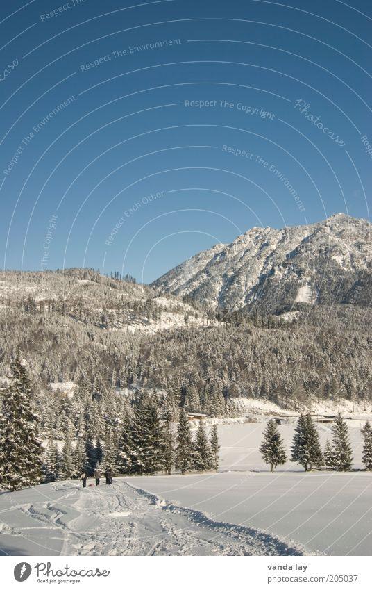 Abkühlung Umwelt Natur Landschaft Urelemente Himmel Wolkenloser Himmel Winter Schönes Wetter Schnee Wald Alpen Berge u. Gebirge Schneebedeckte Gipfel kalt weiß