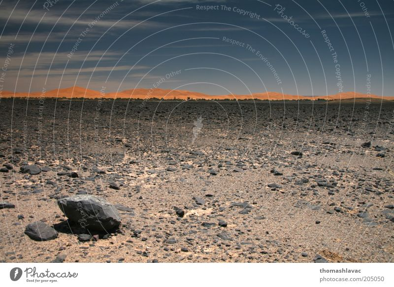 Sahara in Marokko Umwelt Natur Landschaft Sand Himmel Sonnenlicht Schönes Wetter Wärme Wüste Ferien & Urlaub & Reisen Felsen Düne Farbfoto Außenaufnahme