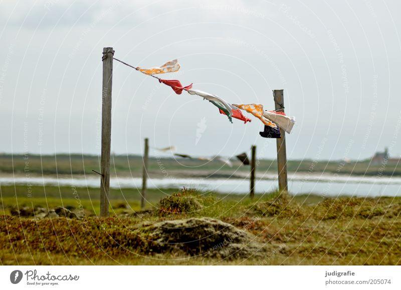 Island Umwelt Natur Landschaft Wasser Himmel Wetter Wind Gras Seeufer Bewegung hängen mehrfarbig Seil Holzpfahl Textilien Stoff Farbfoto Außenaufnahme