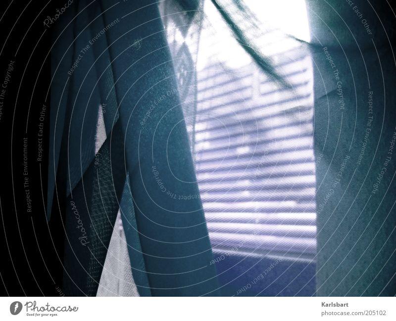 sommerwind. Lifestyle elegant Design exotisch schön Leben harmonisch ruhig Sommer Häusliches Leben Wohnung Fenster Linie kalt Bewegung Vorhang Jalousie Brise