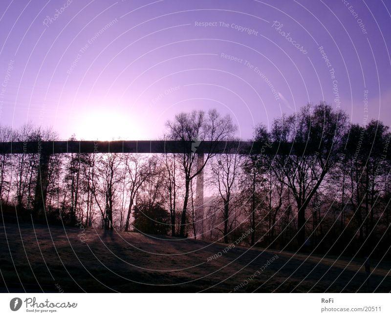 im frühen Sonnenlicht Herbst Baum violett Nebel Licht Hügel Morgen Brücke Himmel Schatten