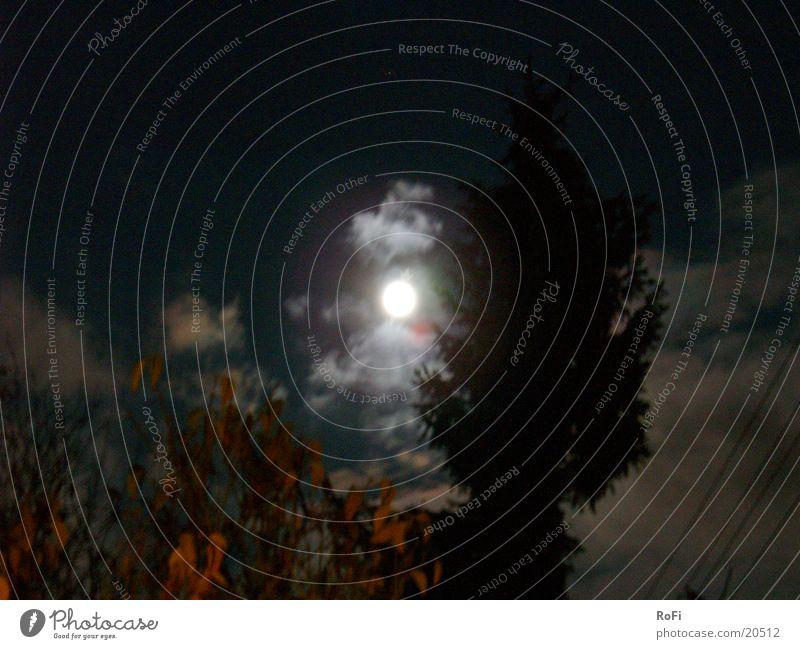 im Mondlicht Himmel Wolken dunkel Herbst mystisch unheimlich Vollmond