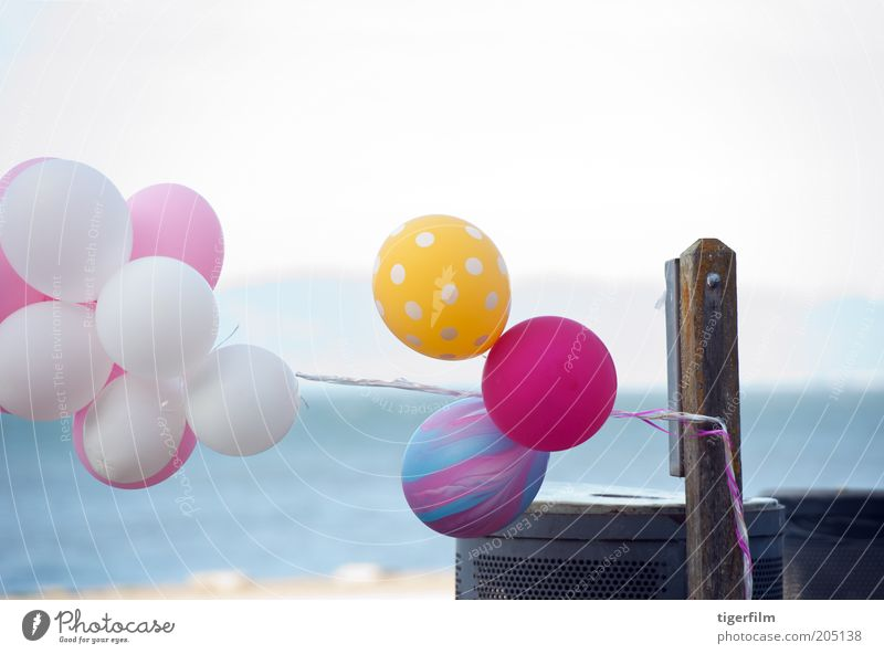 """Ballons, die im Wind schwanken. Luftballon Farbe mehrfarbig rosa gelb blau Himmel """"""""San Francisco"""""""" """"""""Bay Area"""""""""""" Strand Küste Wasser Müll Dose Müllbehälter"""