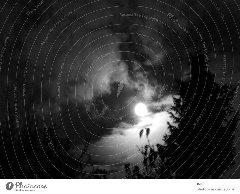 Vollmondnacht Nacht Wolken mystisch unheimlich dunkel Licht Mond Schwarzweißfoto Himmel
