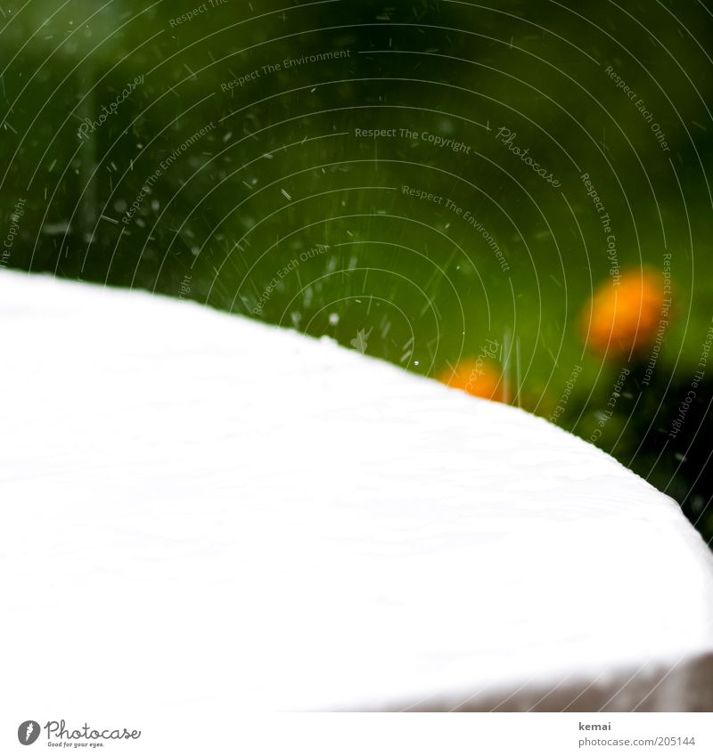 Erfrischung! Umwelt Wasser Wassertropfen Frühling Sommer Klima Wetter schlechtes Wetter Regen Tisch grün weiß spritzen Tropfen wegspritzen Farbfoto mehrfarbig