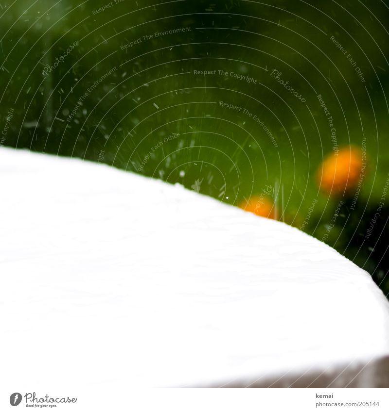 Erfrischung! Wasser weiß grün Sommer Frühling Regen Wetter Umwelt Wassertropfen nass Tisch Tropfen Klima feucht Möbel