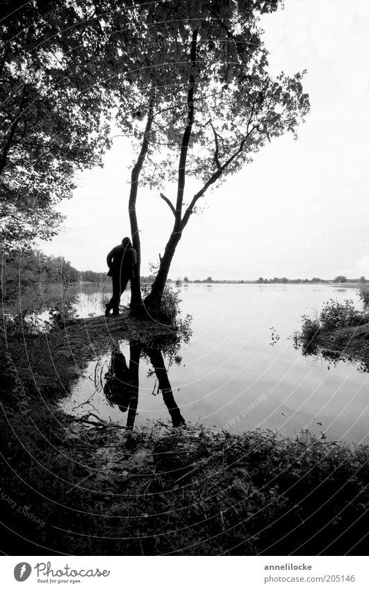 am baum lehnend den see betrachtend Mensch Mann Natur Wasser Baum Ferien & Urlaub & Reisen Ferne Erholung Freiheit träumen See Landschaft Erwachsene maskulin