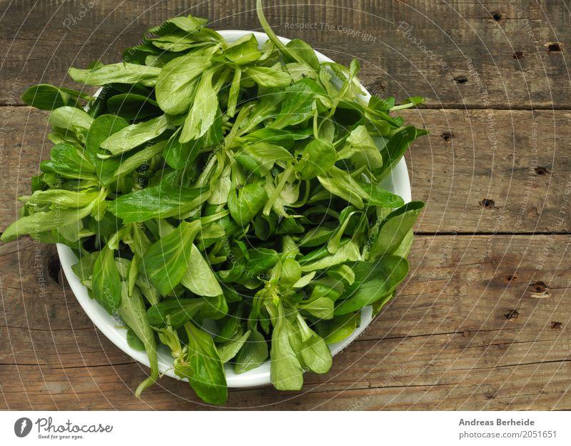 Bio Feldsalat Salat Salatbeilage Bioprodukte Vegetarische Ernährung Lifestyle lecker Gesundheit lettuce salad lambs mache organic table green Blattsalat food