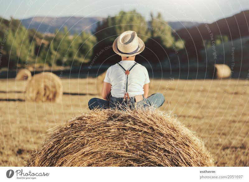Hintere Ansicht eines nachdenklichen Jungen auf dem Strohgebiet Mensch Kind Ferien & Urlaub & Reisen Einsamkeit Freude Lifestyle Traurigkeit Gefühle Wiese Glück