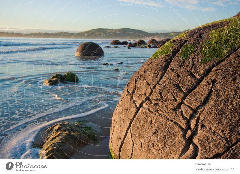 New Zealand 123 Umwelt Natur Landschaft Hügel Felsen Meer Insel alt außergewöhnlich authentisch ästhetisch boulder Farbfoto Außenaufnahme Detailaufnahme