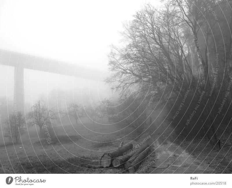 Herbstmorgen in Grau Baum Herbst Berge u. Gebirge grau Nebel Brücke Sträucher Fußweg Morgennebel