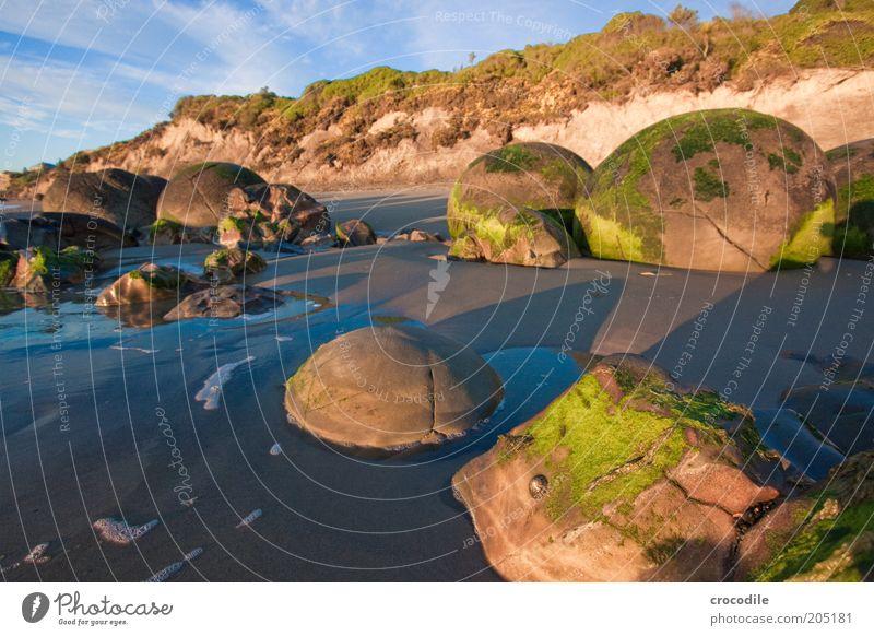 New Zealand 126 Umwelt Natur Landschaft Hügel Felsen Meer Insel alt außergewöhnlich authentisch ästhetisch bedrohlich Farbfoto Außenaufnahme Detailaufnahme