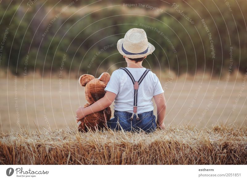 Junge, der Teddybären auf dem Weizengebiet umarmt Mensch Kind Freude Lifestyle Liebe Gefühle Freiheit Zusammensein Freundschaft Freizeit & Hobby Kindheit