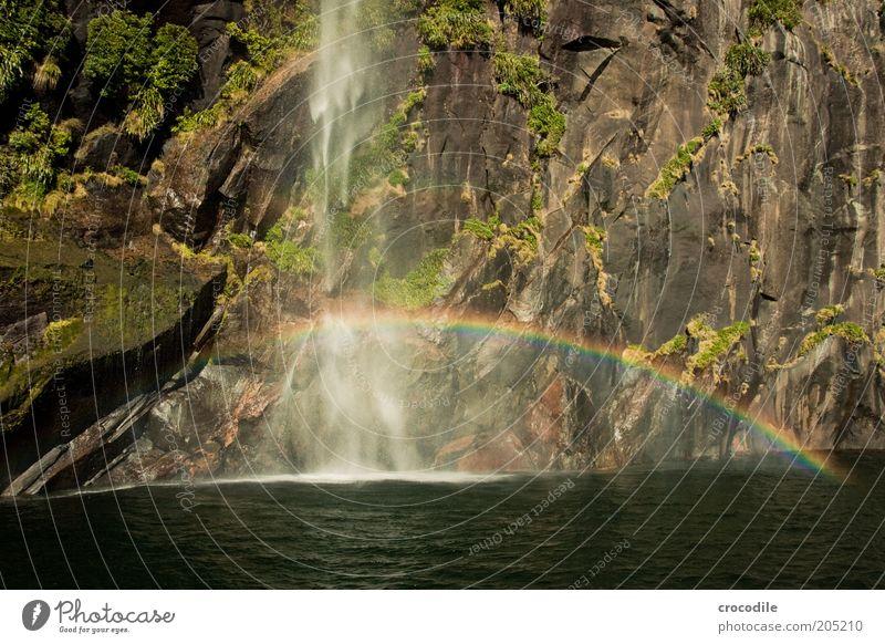 New Zealand 136 Umwelt Natur Landschaft Schönes Wetter Berge u. Gebirge Küste Bucht Fjord Meer Insel Wasserfall Milford Sound ästhetisch Farbfoto Außenaufnahme