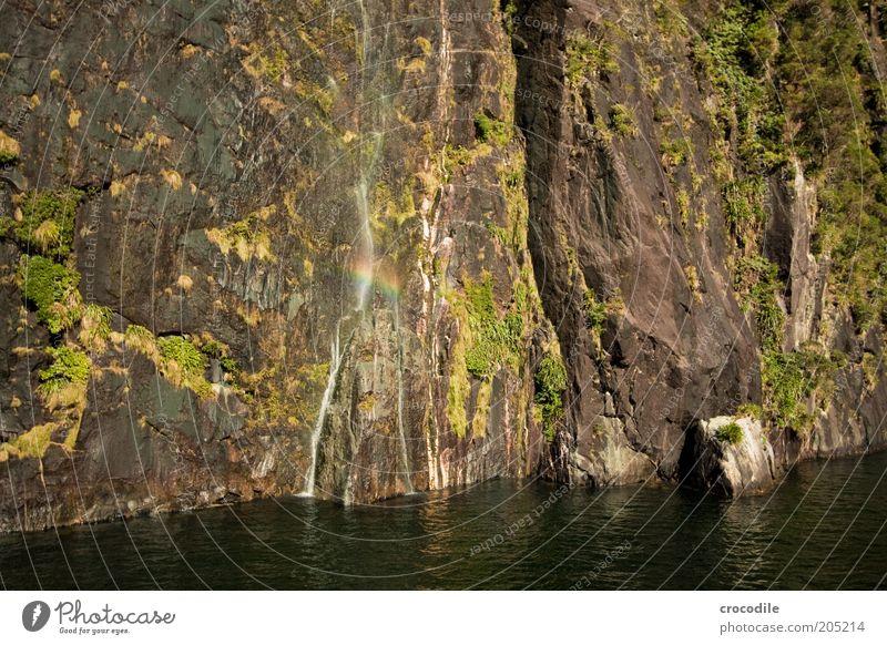 New Zealand 140 Umwelt Natur Landschaft Schönes Wetter Berge u. Gebirge Küste Bucht Fjord Meer Insel Wasserfall Milford Sound ästhetisch Farbfoto Außenaufnahme