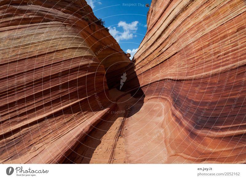 schwungvoll | geformt Natur Ferien & Urlaub & Reisen Landschaft Zeit außergewöhnlich orange Felsen Linie Kraft Abenteuer USA einzigartig Klima Streifen Amerika