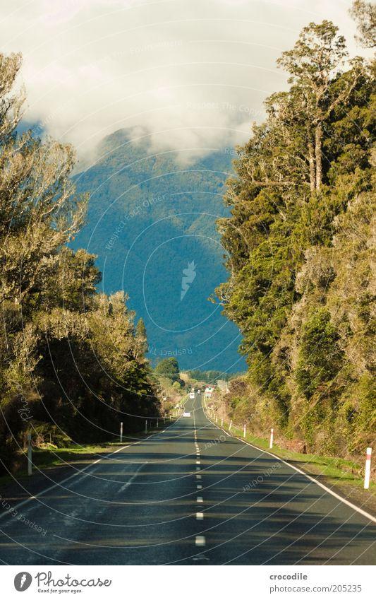 New Zealand 152 Natur Wasser Baum Pflanze Ferne Straße Berge u. Gebirge Umwelt ästhetisch außergewöhnlich Urwald Neuseeland Wildpflanze